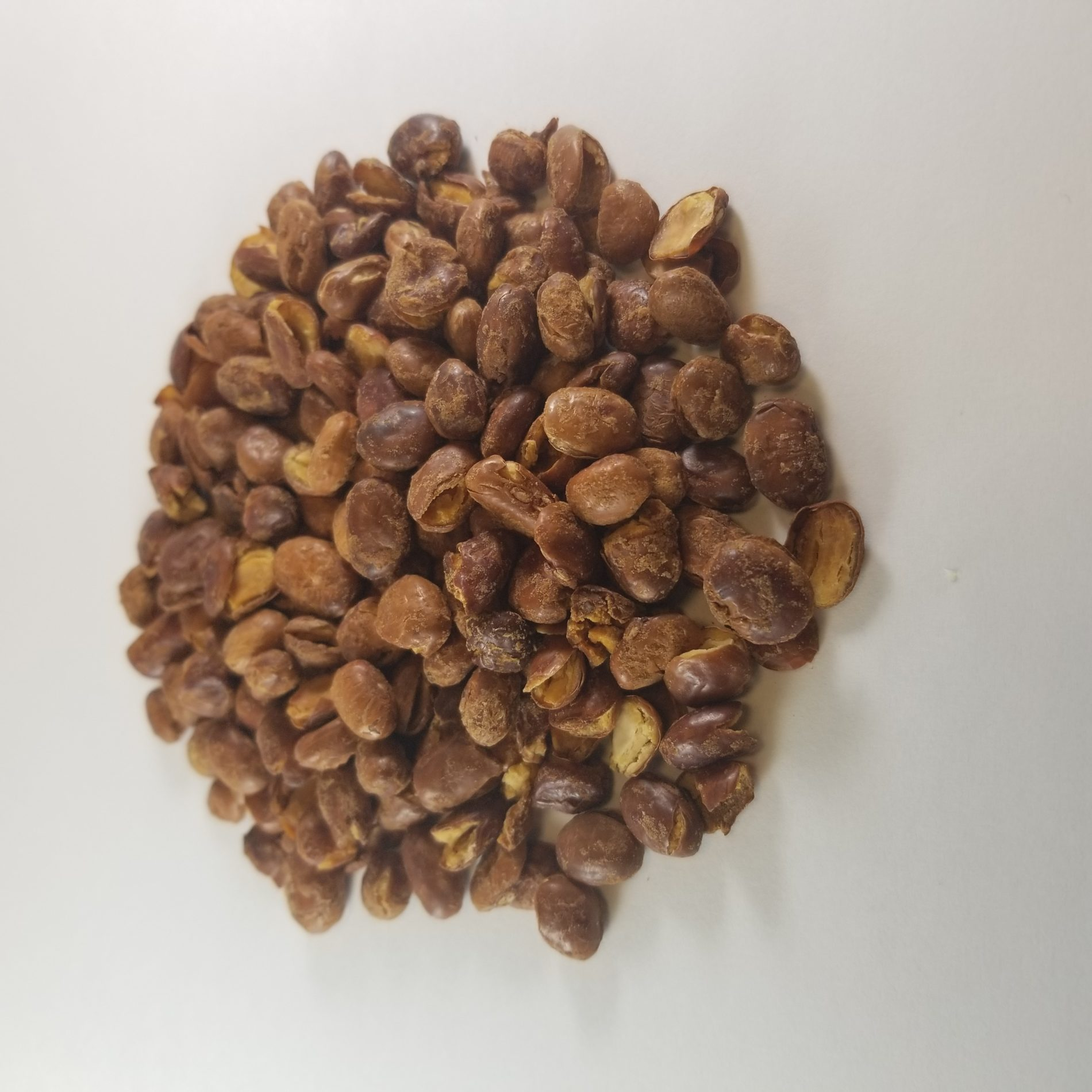 Organic Whole Pinto Beans, 50LB Bag/1000LB Tote